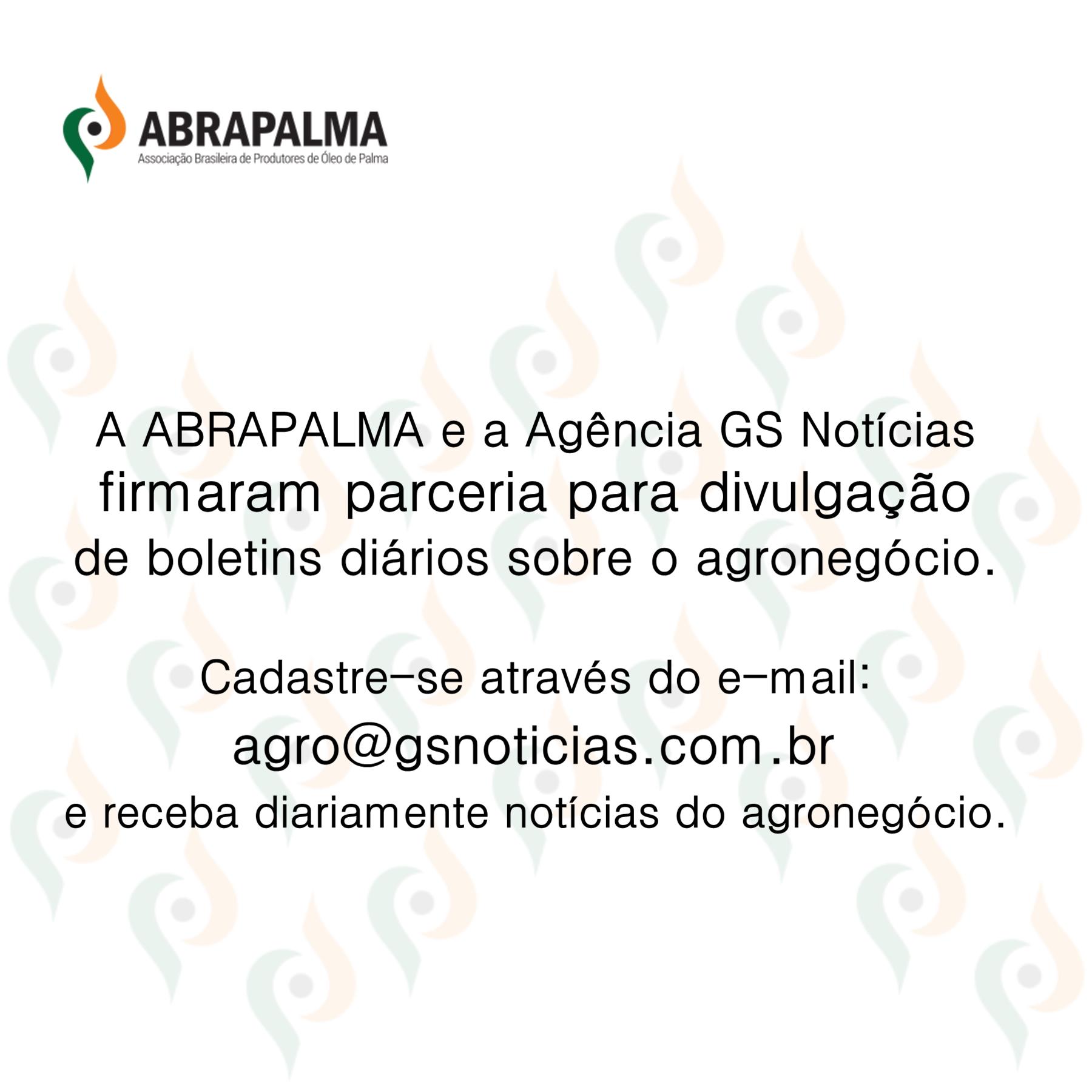 2-BANNER-MIDIAS-ABRAPALAMA-GS