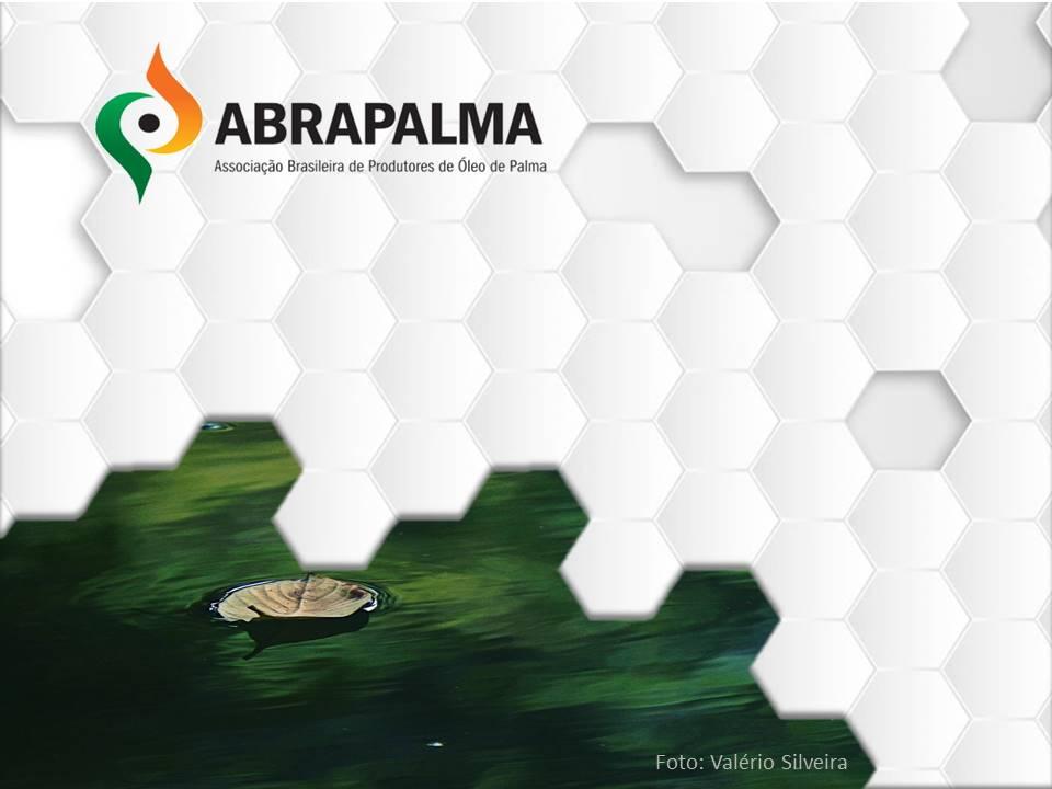 Abrapalma-2019-capa